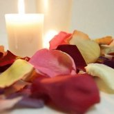 Freeze Dried Rose Petals Image EnlargeClick image to enlarge Freeze Dried Rose Petals