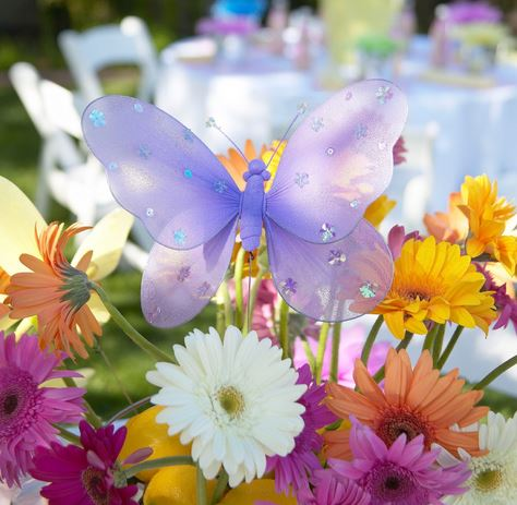 Butterfly Wedding Theme Favors