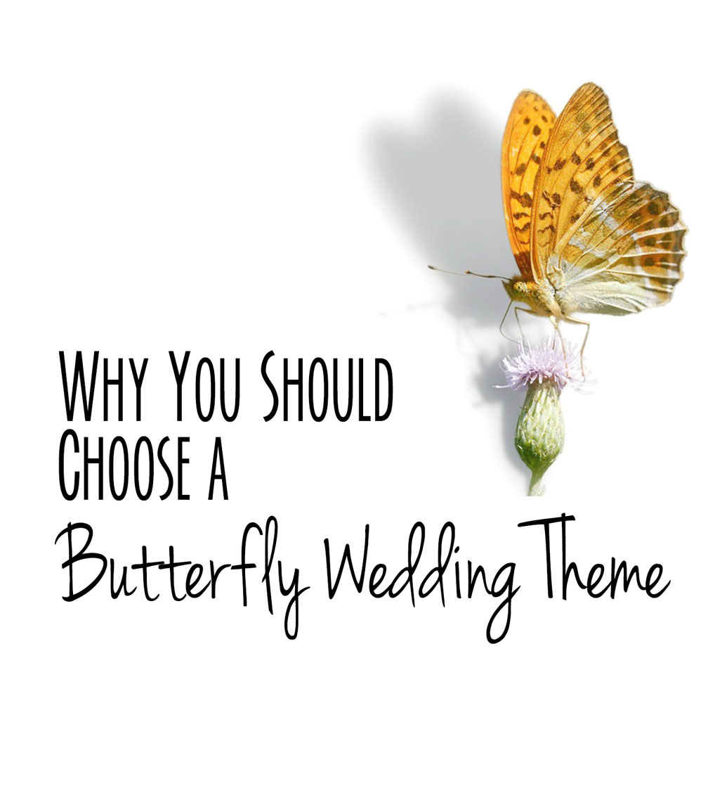 Significance of butterfly wedding themes buycottarizona
