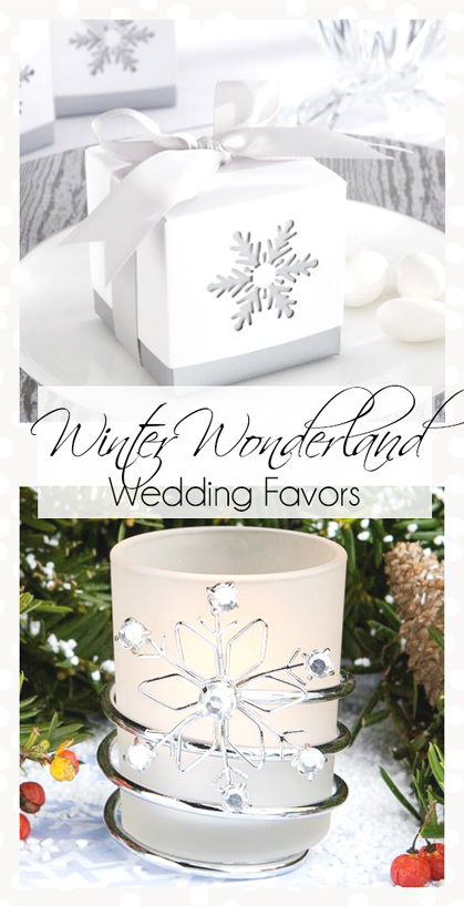 Winter Wonderland Theme Favors